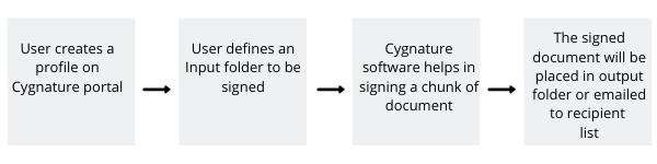 Working Model of Cygnature Bulk Signing Solution